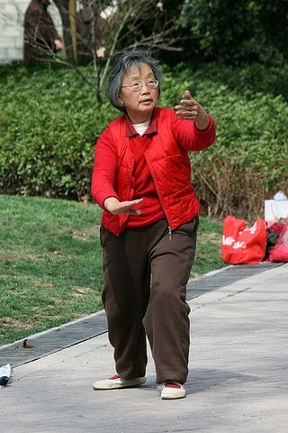 6a0105369e3ea1970b014e86c5cdcb970d 320wi - 2000 year old wisdom wins again: Tai Chi for seniors is great elder-care