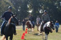 800px US Army 52806 Horse therapy gallops toward helpful transitions - Leveling the Playing Field: A Place in the Herd