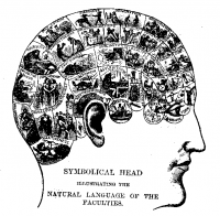 Phrenologychart - Neuroscience is starting to sound suspiciously like the 21st century's version of phrenology