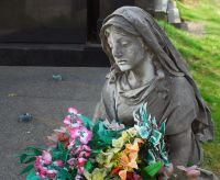 Zentralfriedhof Wien Trauer - Death, Love, and Legacy