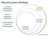 Diagram courtesy of Kathia Laszlo.