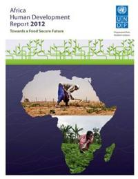AHDR 2012 Cover en home - Why Economic Growth is the Wrong Focus for Africa (Part 1)