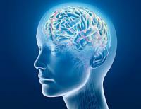 Brain 2 - Good Design. Faulty Thinking.