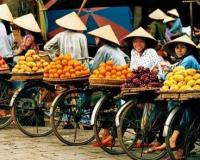 Vietnam Vacations Hanoi Day Tours Vietnam Tours Vietnam Hanoi Tours Ha Noi Tours in Vietnam Hanoi Tours VietnamBat Trang Day Tour Hoa Lu Tam Coc Day Tour 7 - Opinion, Decision and Experience: The Lost Connection