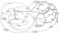 loop 0 - Re-Looping to Add Conversations?